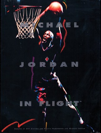 Michael Jordan In Flight (1993)