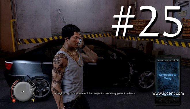 Sleeping Dogs Mission 25